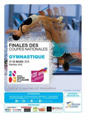 Finales des coupes nationales mixtes de gymnastique