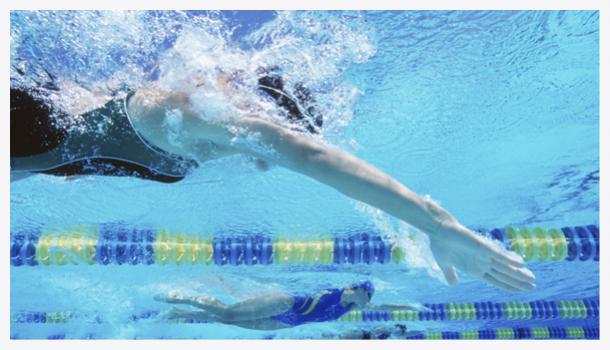 activité natation fscf