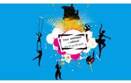 Séjour artistique et culturel organisé par le Lyonnais