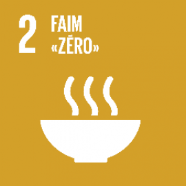 """Objectif de développement durable 2 """"Faim zéro"""""""