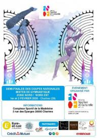 Demi-finales des coupes nationales mixtes de gymnastique Zone Nord/Nord-Est