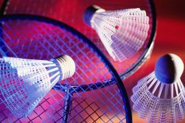 FSCF badminton