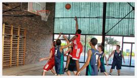 basket fscf