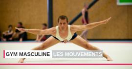 Gymnastique masculine FSCF