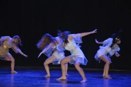 Le dépliant des stages fédéraux de Danses est maintenant disponible !