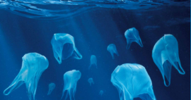 des sacs plastique en forme de méduses