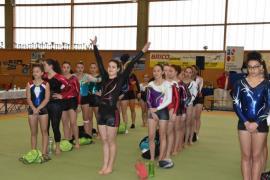 FSCF 35 Palmarès gymnastique féminine