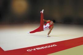 FSCF ille-et-vilaine gymnastique masculine