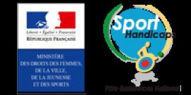logo ministère et handiguide
