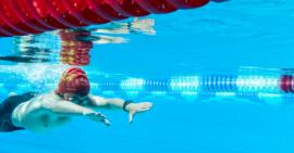 Pari gagné pour la commission nationale de natation