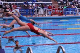 La natation mise à l'honneur à Tours pour le championnat national 2016