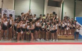 FSCF Nouveau mouvement, nouveaux bénévoles, au service de la pratique gymnique en compétition