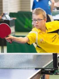 Championnat tennis de table