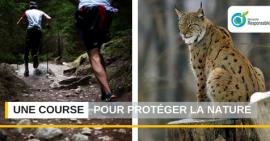 Une course d'orientation pour protéger la nature et les espèces en voie de disparition