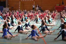 gymnastique compétition interrégionale Eloyes