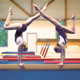 La Commision Nationale de Gymnastique Féminine (CNGF) a pour mission  d organiser et de gérer la pratique de la Gymnastique Féminine au sein de  la FSCF   27d33e6d687