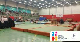challenges régionaux de gymnastique féminine ainées et jeunesse