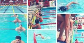 FCSF natation