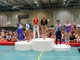 Championnat National Individuel Mixte de gymnastique : Accueil, Qualité, Ambiance