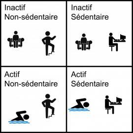 FSCF_un-jeu-pour-comprendre-la-différence-sedentarite-inactivite