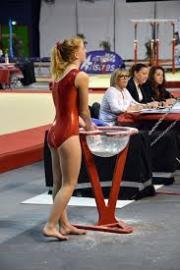 FSCF 35 Gymnastique Féminine Formation Juges