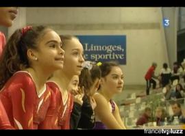 Demi-finales des coupes nationales mixtes de Gymnastique à Limoges