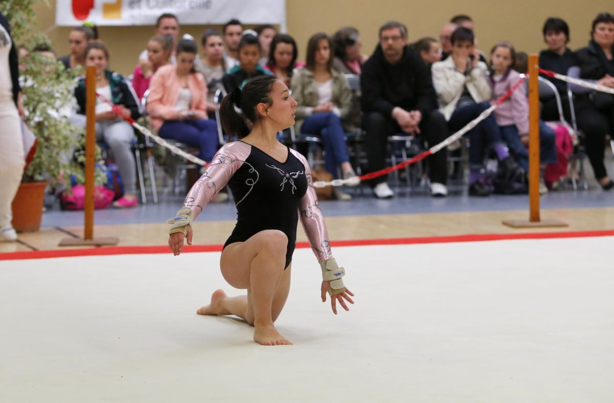 Championnat national individuel mixte de gymnastique. ActivitésManifestationGymnastique  féminineGymnastique masculine db1852e0be4