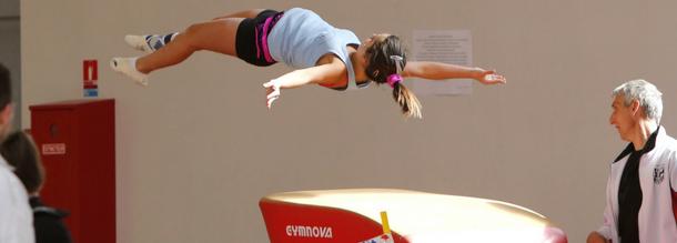 Commission Technique Nationale - Gymnastique féminine  28feb0d3b51
